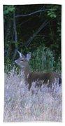Mule Deer - Sinkyone Wilderness Beach Towel