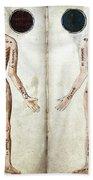 Muscle Man, Brains Ventricles, 15th Beach Towel