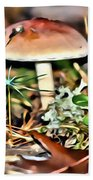 Mushroom And Moss Beach Towel