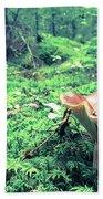 Mushroom In The Green Wood Beach Sheet