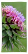 Musk Thistle In Bloom Beach Towel