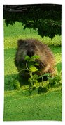Muskrat Susie Or Muskrat Sam Beach Towel