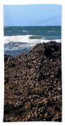 Mussels Beach Towel