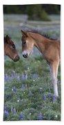 Mustang Foals Beach Towel
