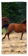 Mustang Gallop Beach Towel