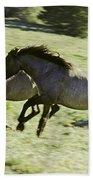 Mustang Mares Beach Towel