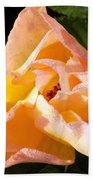 My Favorite Rose Beach Towel