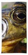 My What Big Eyes You Have Beach Towel