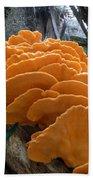 Myakka Fungi Beach Towel
