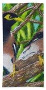 Mynah Birds #474 Beach Towel