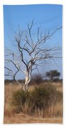 Mystic Buishveld Tree Beach Towel