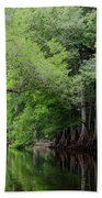 Mystical Withlacoochee River Beach Towel