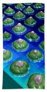 Nanoparticles, Lithium Metal, Afm Beach Towel