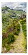 Nant Ffrancon Footpath Beach Towel