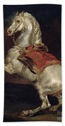 Napoleon's Stallion Tamerlan Beach Towel