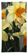 Narcissus Fortissimo Beach Towel
