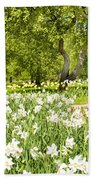 Narcissus In Apple Garden Beach Towel