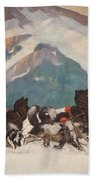 National Park Service - North Country Beach Towel
