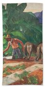 National Park Service - Tropical Country Beach Towel