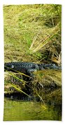 Native Evergladien Beach Towel
