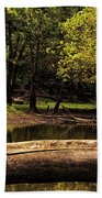 Natural Seating By River Beach Towel