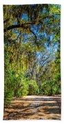 Nature Drive Beach Towel