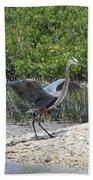 Nature In Florida Beach Towel