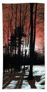 Nature Of Wood Beach Towel