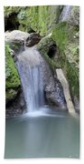 Nature Spring Scene Creek Beach Towel