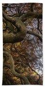 Nature Tangle Beach Towel