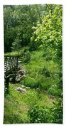 Nature Trail  Beach Towel