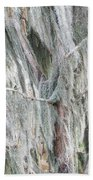 Natures Drapery At Okefenokee Swamp Beach Towel
