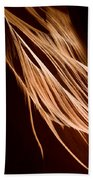 Natures Lines Beach Towel