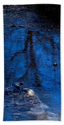 Natures Looking Glass Beach Towel