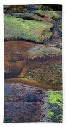 Nature's Mosaic No. 1 Beach Towel