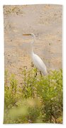 Nature's Picture Beach Towel