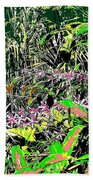 Nature's Way Beach Towel by Eikoni Images