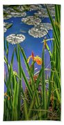Nature's Window #h5 Beach Towel by Leif Sohlman