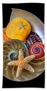 Nautilus With Sea Shells Beach Towel