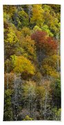Nc Fall Foliage 0561 Beach Towel