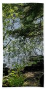 Near Water Of The Forest Lake. Beach Towel