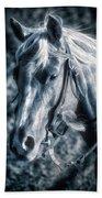 Nebraska Rodeo Roping Horse... Beach Towel