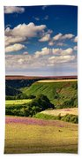 Needle Point From Saltersgate Beach Towel