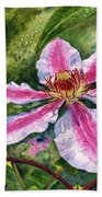 Nelly Moser Clematis Beach Towel