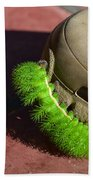 Neon Geen Caterpillar Loves Crocs Beach Towel