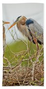 Nesting Blue's Beach Towel