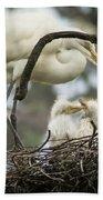 Nesting Egret Beach Towel