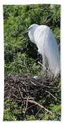 Nesting Great Egret With Egg Beach Towel