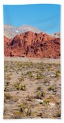 Nevada's Red Rocks Beach Sheet