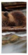 Never Give Up - Wilderness Art Beach Towel